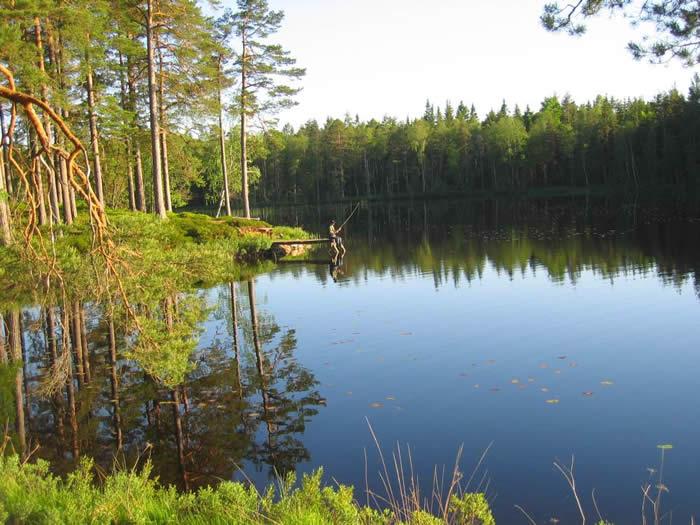 Angeln am Kalvsjön in Schweden: Steg am See