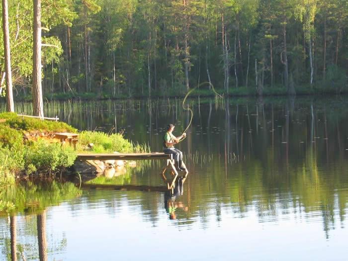 Angeln am Kalvsjön in Schweden: Fliegenfischen vom Steg