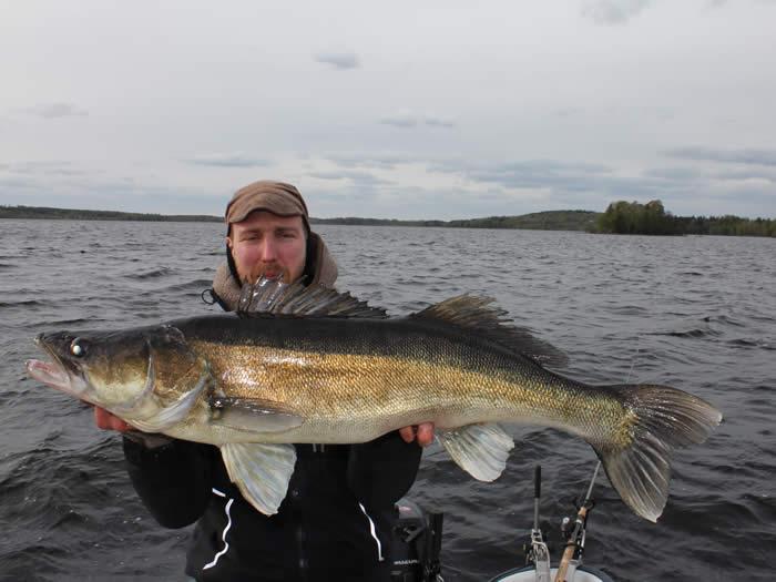Angeln in Smaland (Schweden) am Ruskensee - Angler mit Beute