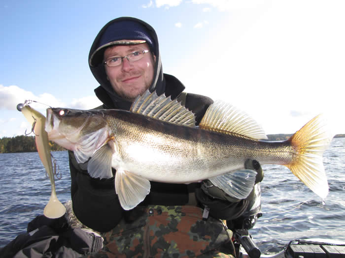 Angeln in Smaland (Schweden) am Ruskensee - Angler mit gefangenem Zander