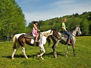 Outdoor aktiv: Pferde und reiten in Schweden - Smaland