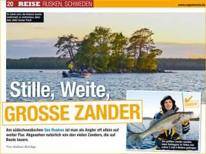 Aktuell: Presse Angelwoche: Zander-Angeln am Ruskensee in Smaland (Schweden) 01/2017